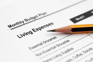 Denver Tax Attorney   What Are IRS Allowable Living Expenses?
